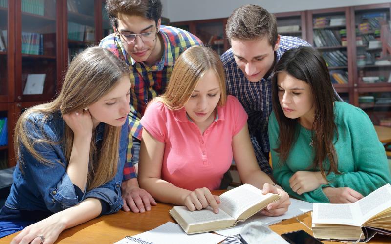 La littérature en classe de langue au collège, une partie de plaisir ?