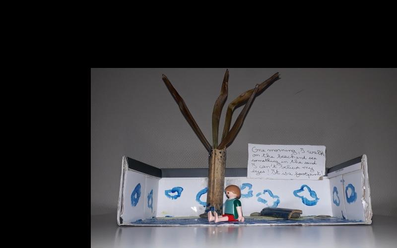 Réaliser un atelier de lecture cursive en classe de langues : Robinson Crusoe